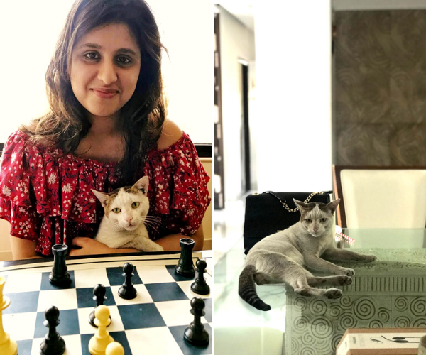 International-Cat-Day_-How-Some-Super-Cats-Changed-These-Ladies'-Lives-7-1